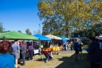 LR0047_KingStFarmersMarket